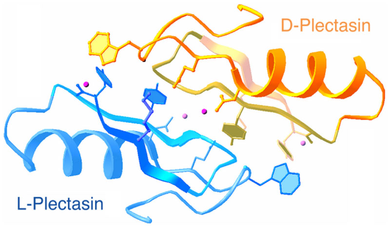 An example of a protein structure in a racemic crystal form in space group P1(bar). (Adapted from Yeates and Kent, 2012).